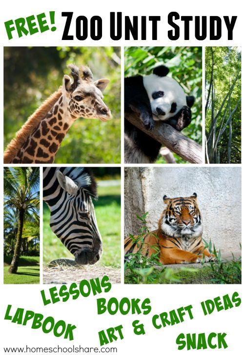 Free Zoo Unit Study & Lapbook from Homeschool Share