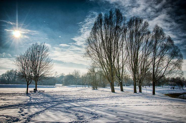 Winter - Kronthaler Weiher