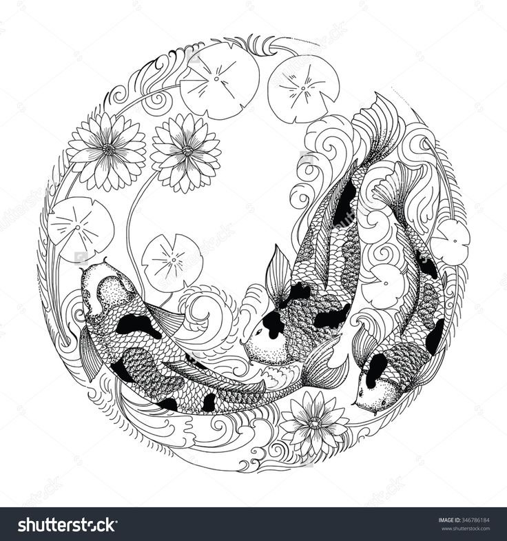 Hand Drawn Koi Fish In Circle, Japanese Carp Line Drawing Coloring ...                                                                                                                                                                                 More