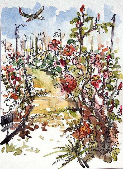 San Jose Heritage Rose Garden San Jose California Flickr Photo Sharing Artist Suhita