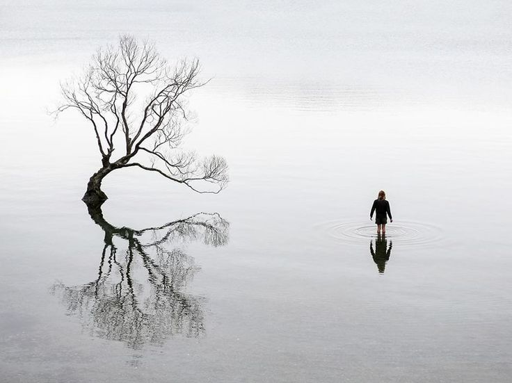 Fotografia di Alexandre Gendron  Lago Wanaka, Nuova Zelanda.