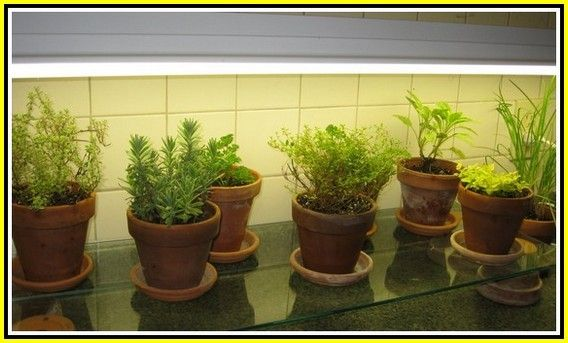 Gardening Tips You Ought To Make Note Of Herb Garden In Kitchen