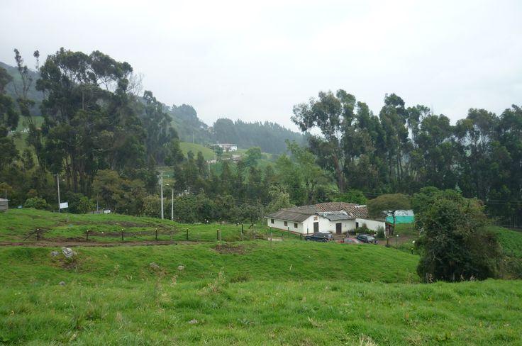 Vendo Finca en Cogua - Cundinamarca 6 Fanegadas  $720.000.000 millones de pesos Cel. 3144204021 Ecarmona