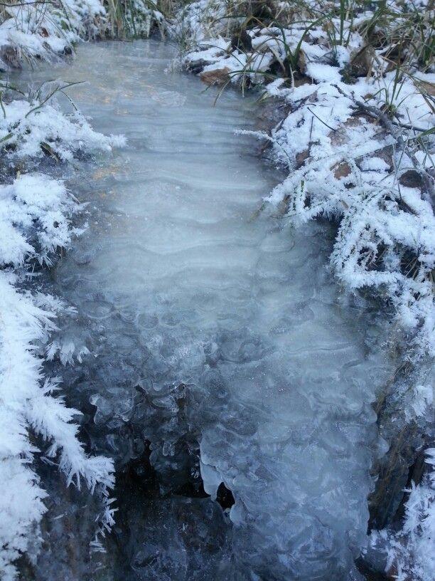 Winter in Krimulda (Latvia)