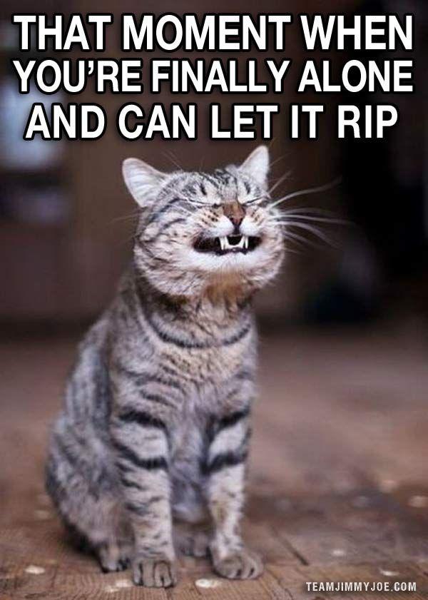 Ahhhhhhh! – 15 Ways to Laugh: Funny Pics & Memes. I laughed way too hard at this!