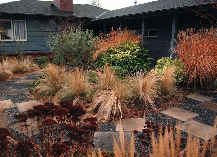 51 best garden images on pinterest backyard ideas for Landscape design using ornamental grasses