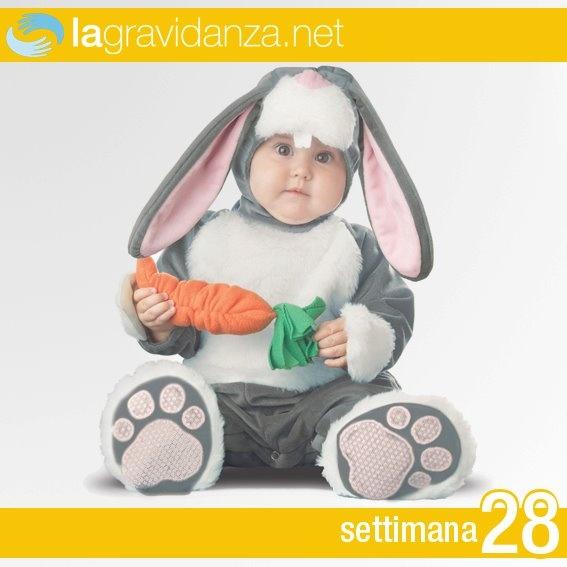 http://www.lagravidanza.net/settimane/28-settimana-di-gravidanza-raggiunge-un-terzo-del-peso-previsto-alla-nascita