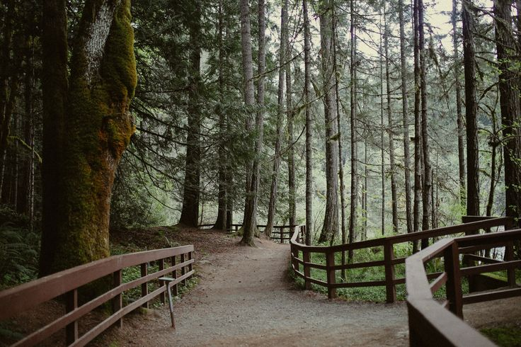 5 Totally Fun Things to Do in Nanaimo, BC — Local Wanderer