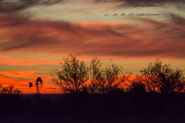 Karoo landmarks: one of the many windmills on the walk.