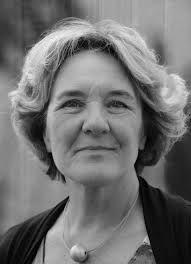 Loes den Hollander is een Nederlandse schrijfster van literaire thrillers. Haar loopbaan als auteur begon toen zij in 2001 een verhalenwedstrijd van Libelle won
