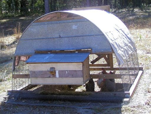 Hoop house for chickens - Homesteading Today - a whole forum thread on hoop houses with ideas for including nest boxes