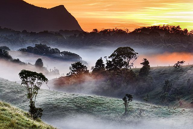 Mist filled valleys of the Atherton Tablelands
