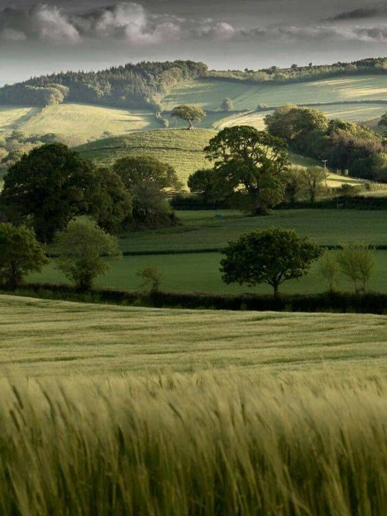 Devon, England. I would hide there and never leave.