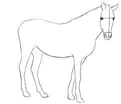 how to draw a horse step by step realistic easy