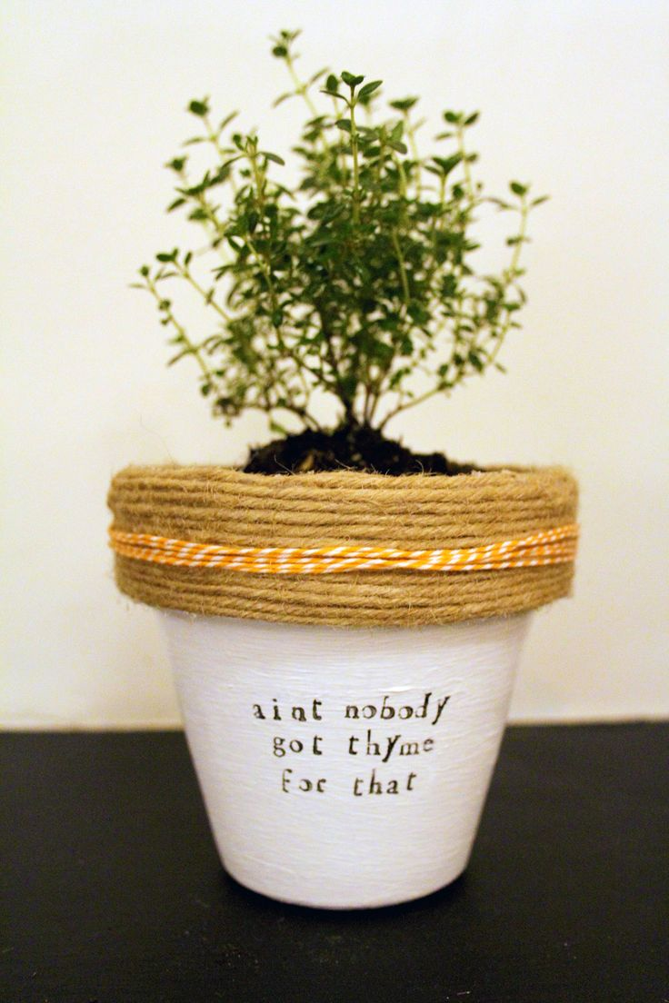 This is my favorite! Ain't nobody got thyme for that! Plant themed puns! Check the whole store for more! www.etsy.com/shop/PlantPuns