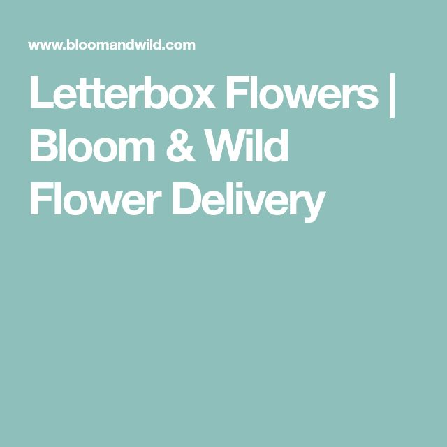 Letterbox Flowers | Bloom & Wild Flower Delivery