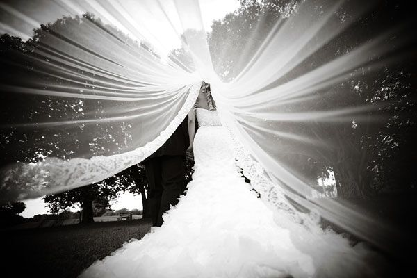 Breathtaking photo under the veil.