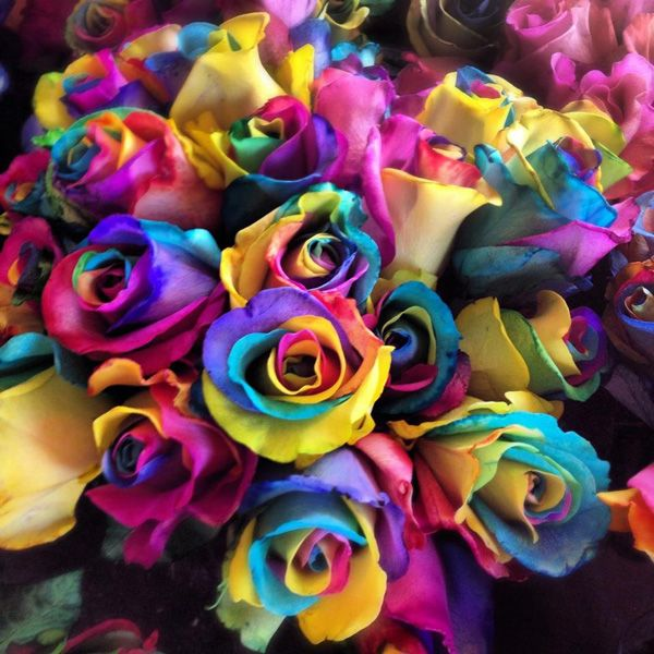 17 best images about rainbow roses on pinterest wedding for What are rainbow roses