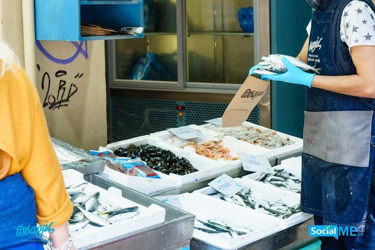 Όμορφα Ψάρια που φέρνουν στα σπίτια σας ωραίες θαλασσινές γεύσεις!!  ☎️Delivery: 231 023 2228