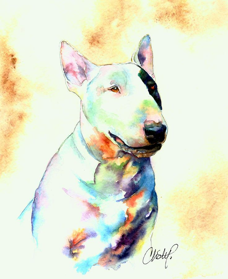 Bull Terrier Dog Portrait Painting by Christy Freeman - Bull Terrier Dog Portrait Fine Art Prints and Posters for Sale
