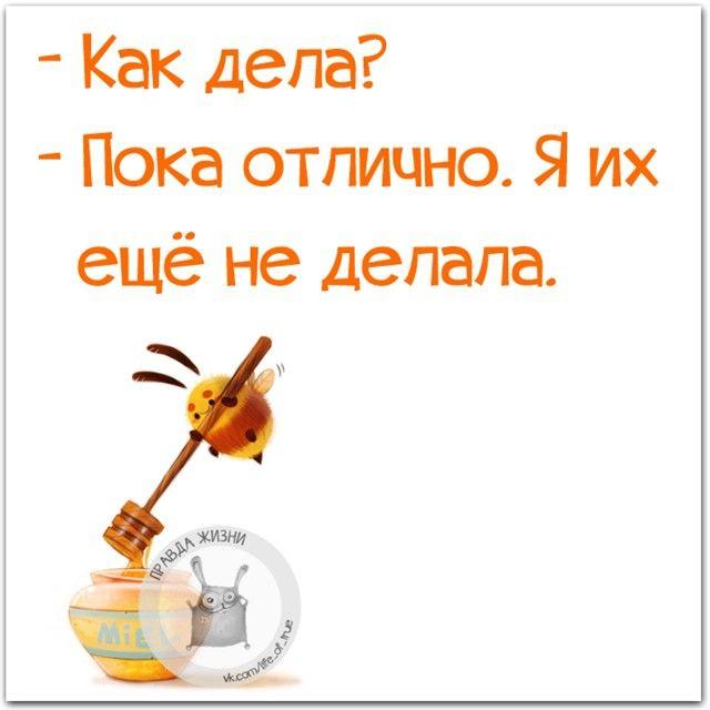 #правдажизни #юмор #позитив #дела