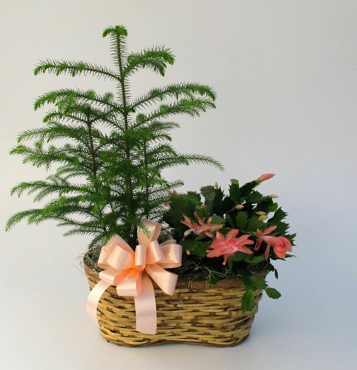 Silk Wedding Flowers Atlanta Ga : Best images about christmas atlanta style on