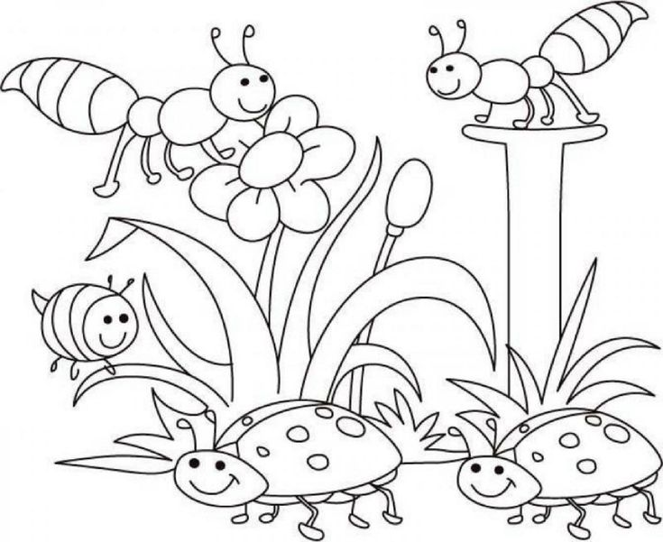 spring coloring pictures for season coloring activity dear joya