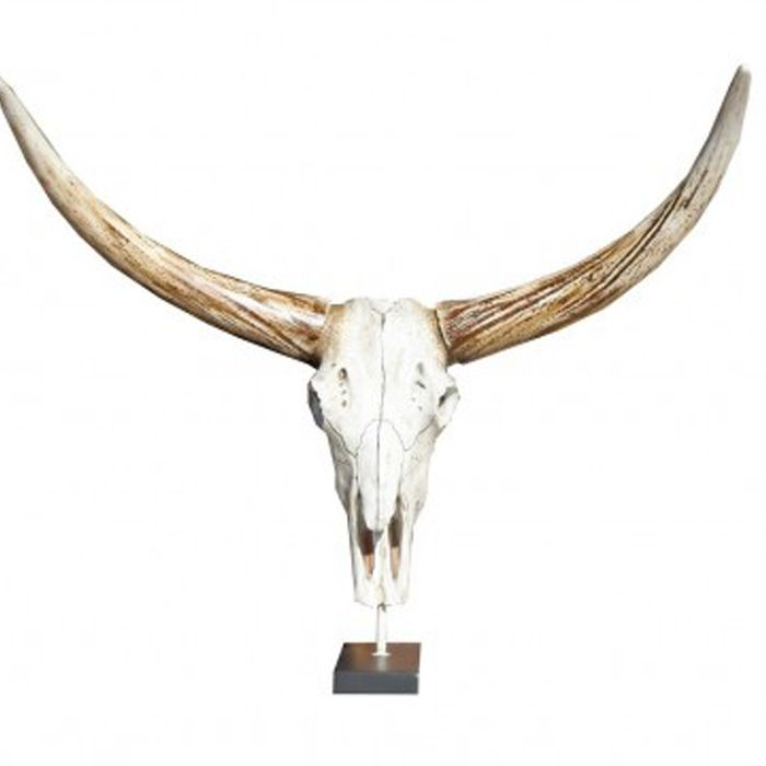 Six things shop - Bull horn skull on stand - steer head - long horn skull