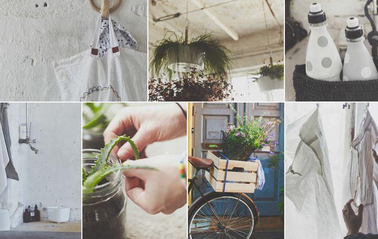 I det här kollaget ser du sju sätt att leva mer hållbart hemma, som att odla egna örter, återanvända duschvattnet, återvinna gamla flaskor, cykla, hänga tvätt på tork och använda gamla glasbrukar som krukor.