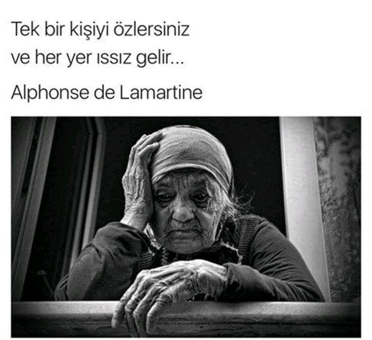 SEVGİLİ ANNEM BABAM..SİZİ ÇOOKK ÖZLEDİM..E.V