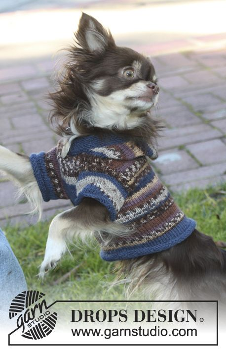 "Knitted DROPS dog's jumper with hood in ""Fabel"". ~ DROPS Design"
