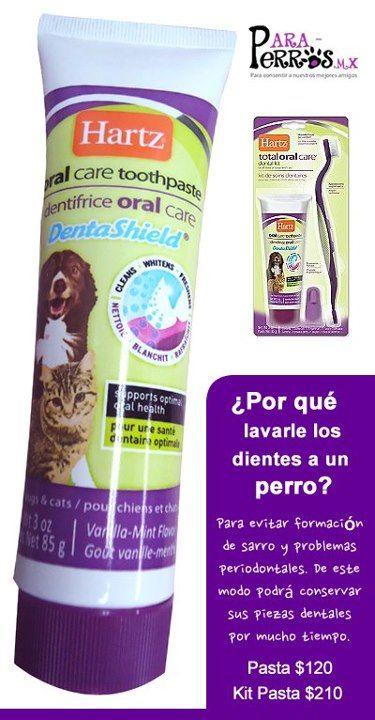 El Kit Dental incluye 1 tubo de pasta de dientes, 1 cepillo y 1 dedal para que acoples a tu perro al manejo oral.