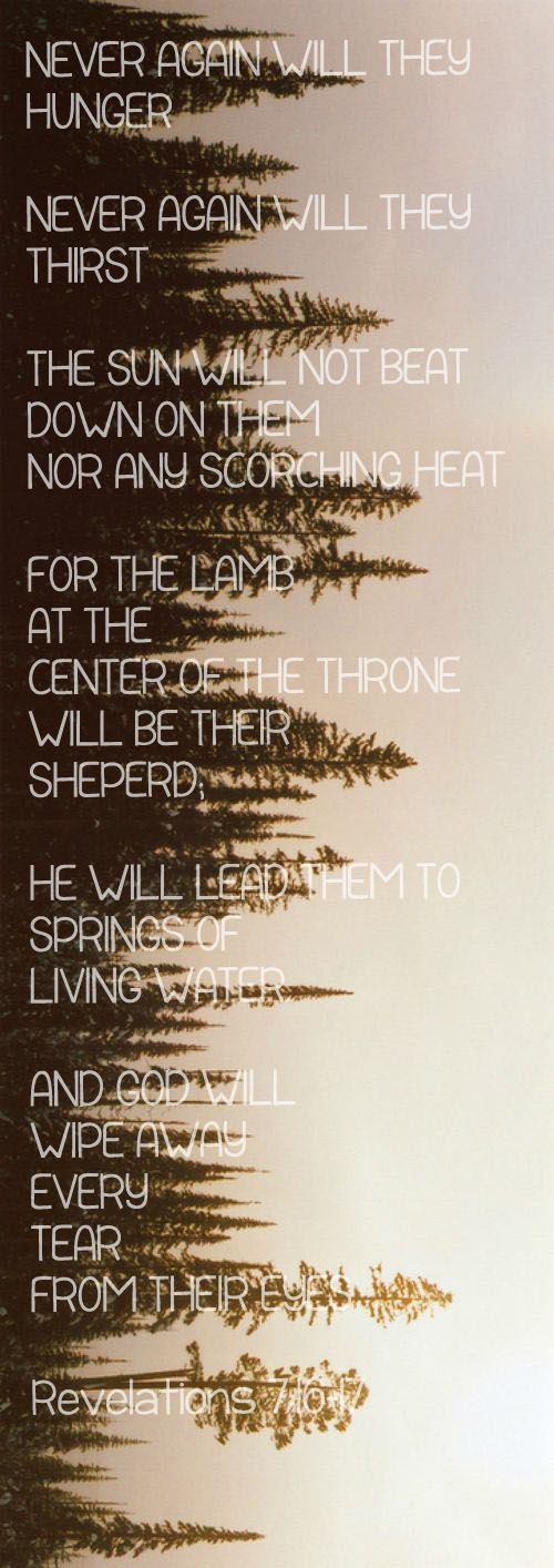 Revelations 7:16-17...More at http://beliefpics.christianpost.com/