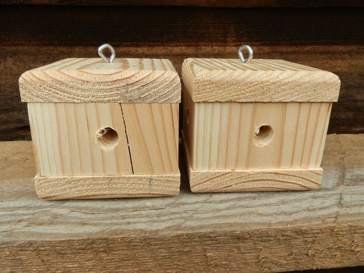 2 Pack Buzz Kill Cube Carpenter Bee TrapsSee Video Inside