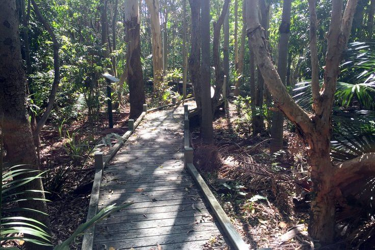 Huxtable Park, in the northern suburb of Chermside West, is a green space thatyour Brisbane Kids can explore for hours. There are two playgrounds, a rainf