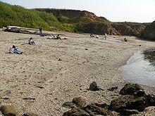 Glass Beach (Fort Bragg, California)