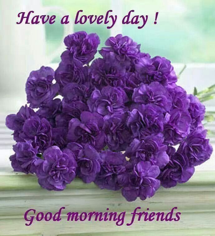 Good Morning Saturday Purple : Best images about good morning pic on pinterest blue
