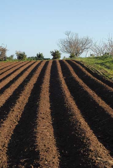 Plowed Fields, smell the dirt uuuuummmmm.