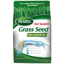 Scotts Turf Builder 3-lbs Sun and Shade Fescue Grass Seed :: Tall Fescue Mix :: $12.97 at Lowes