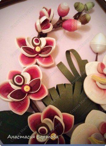 Мастер-класс Поделка изделие Квиллинг Розовая орхидея Бумага Бумажные полосы Клей фото 29