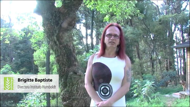 brigitte baptiste ecologia de pesca en el amazonas