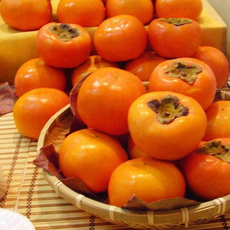 Japanese Persimmon Fruit Tree Seeds - Diospyros kaki 30pcs Q056