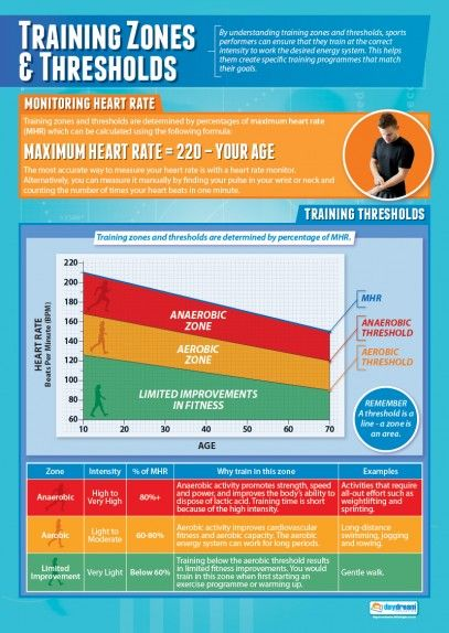 Training Thresholds and Zones | Physical Education School Posters