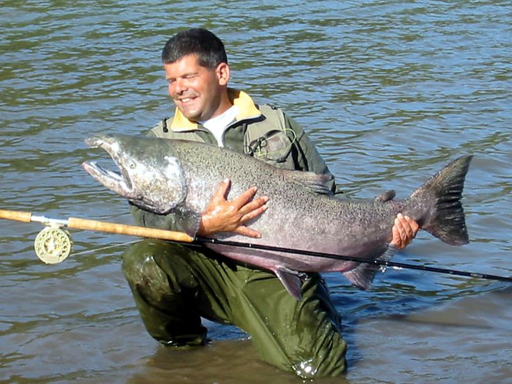 17 best ideas about fishing pictures on pinterest for Hulk fishing shirts