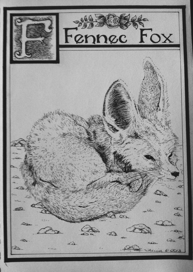 253 best fennec images on pinterest - Pagina da colorare fennec fox ...