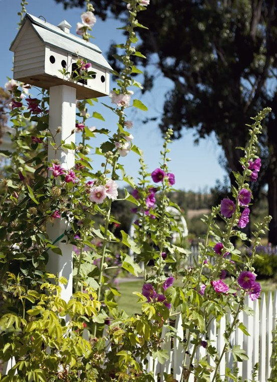 Very prettyWhite Picket Fences, Gardens Ideas, Birdhouses, Cottages Gardens, My Heart, Apartment Living, Birds House, Princess Diana, Bird Houses