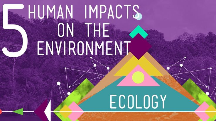 5 Human Impacts on the Environment: Ecology #10