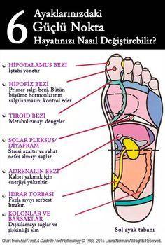 Bacak, ayak ve ellerinizde binlerce sinir olduğunu biliyor muydunuz? Peki her birini bütün vücudunuzu canlandırmak için nasıl kullanabilirsiniz? Ayak refleksolojisiyüzyıllardır basit ve etkili bir alternatif şifa metodu olarak pek çok insan tarafından kullanılmaktadır. Akupunkturun geleneksel tedavi metoduyla ilişkili olanrefleksolojibedenin canlandırıcı noktalarına odaklanarak denge, rahatlama ve şifalanmayı sağlar. Açıkçasırefleksolojiher şeyi tedavi edemez…