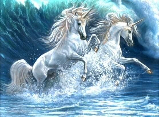 Google Image Result for http://2.bp.blogspot.com/_nm9ySucveA8/TEYgGu9DIgI/AAAAAAAAAO4/XI1q38FFlxw/s1600/unicorns2q.jpg