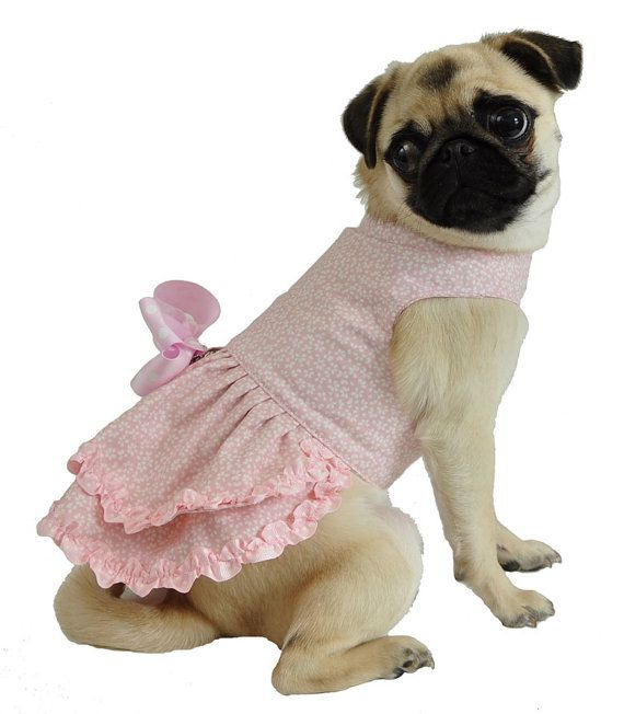 Pink Flowery Dog Dress with Pink Polka Dot Bow by thedoggiemarket, $48.00
